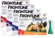 Save money on pet costs splitting larger doses of frontline flea