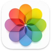iCloud Photos Backup Options: Direct Transfer to Google Photos, Bulk Download Tool